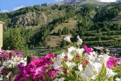 2017-08-14-Biken-im-Aostatal-09